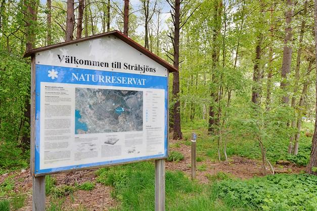 Strålsjö naturreservat