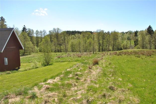 Ängsmark närmast husen. Risån ligger ca 60 m från boningshuset (vid trädridån)