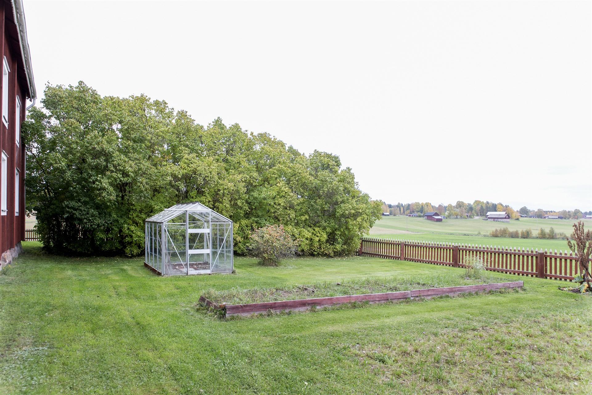 Odlingsmöjligheter i växthus och i land