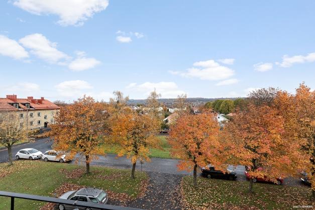 Vacker utsikt mot Mösseberg