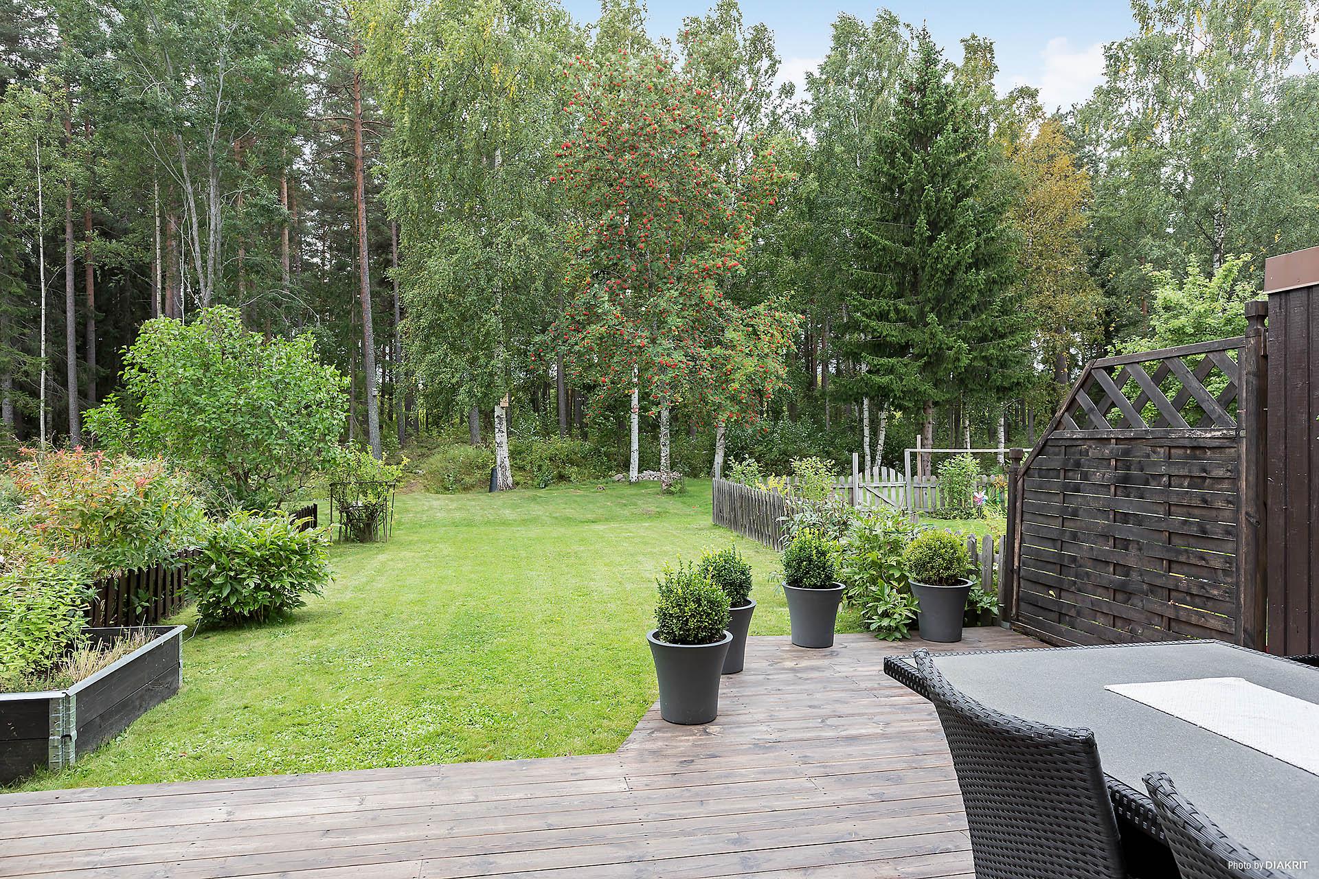 Terrass samt trädgårdssida - Vy från vardagsrum