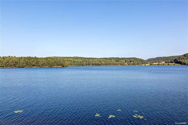 Möjlighet till arrende av 50 m strand tillsammans med granntomten Björkhöjden.