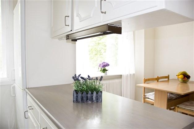 Kök i bostadshus