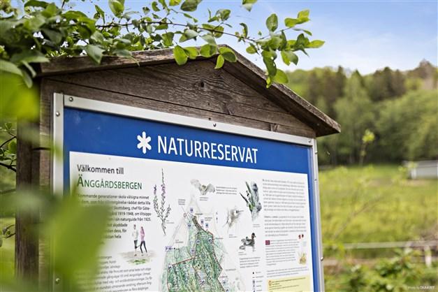 ÄNGGÅRDSBERGENS NATURRESERVAT - Stort område som sträcker sig ända till  Sahlgrenska