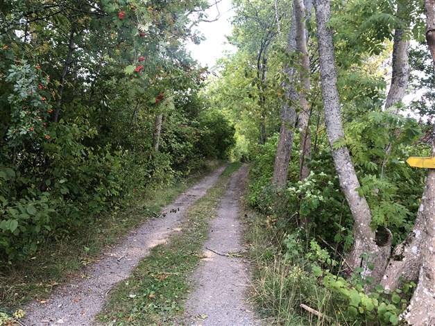 Finns även en grusväg ner mot bryggan runt några av grannfastigheterna