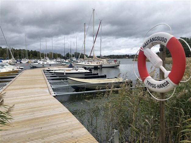 Fastighetsägarföreningens brygga som ligger ca 100 meter från tomtgräns. Info om föreningen finns här http://www.hastangsudd.se/