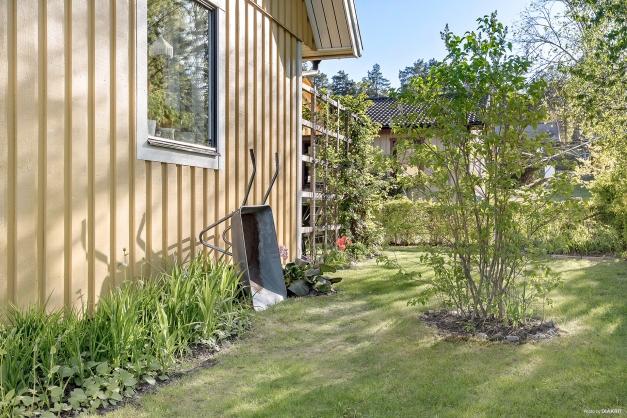Trädgårdsvy