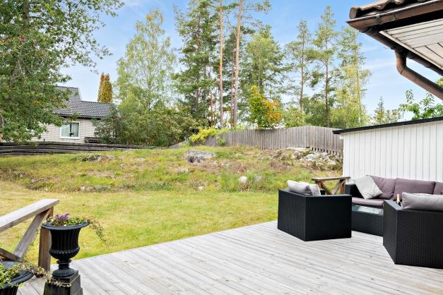 Uteplats och trädgård