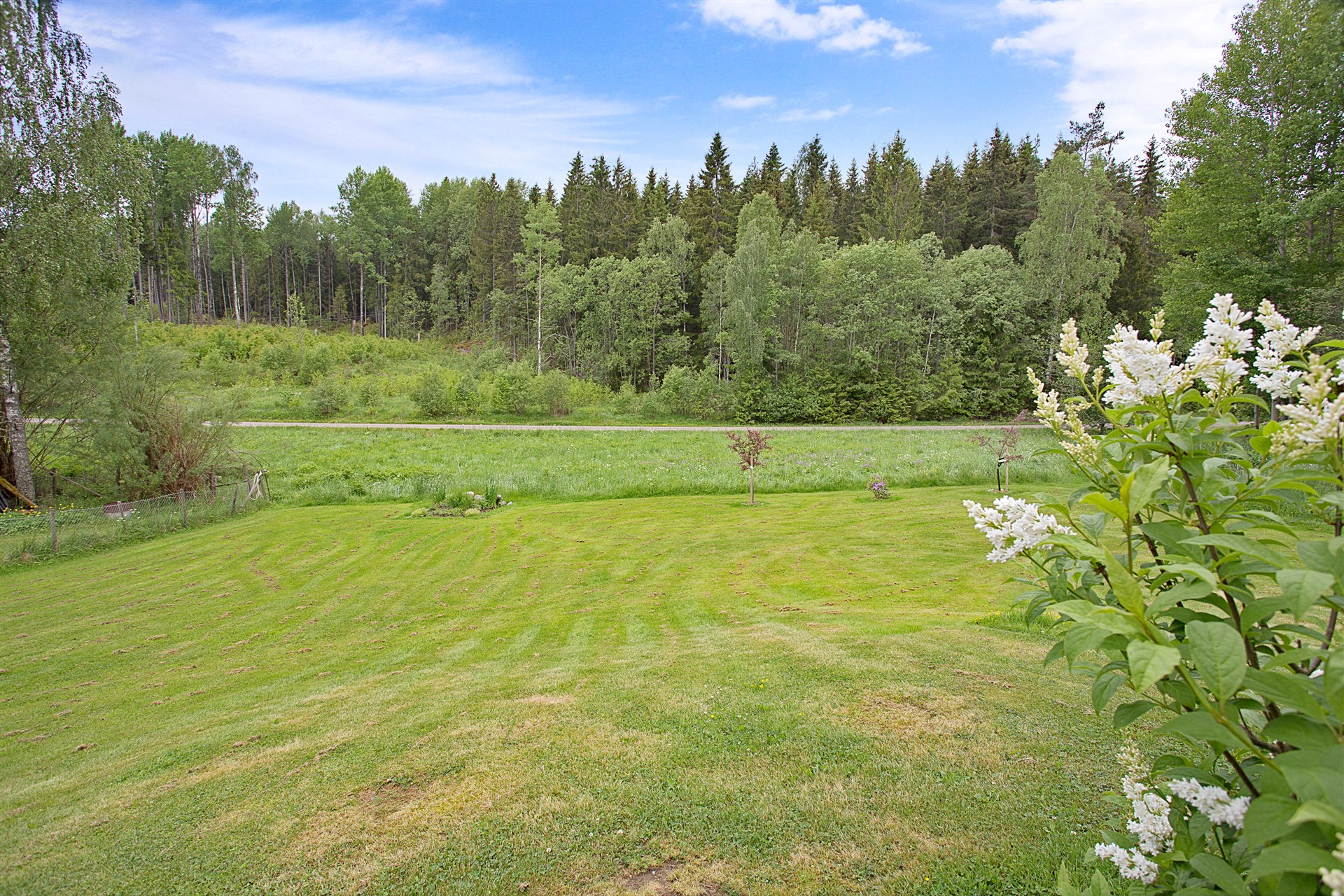 Stor gräsyta, perfekt för barn att leka på. Här finns plats för både studsmatta, gungställning, sandlåda mm.