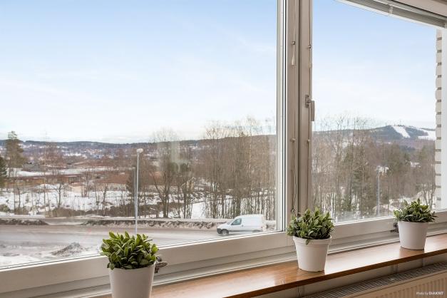 Mycket fin utsikt från alla fönster.