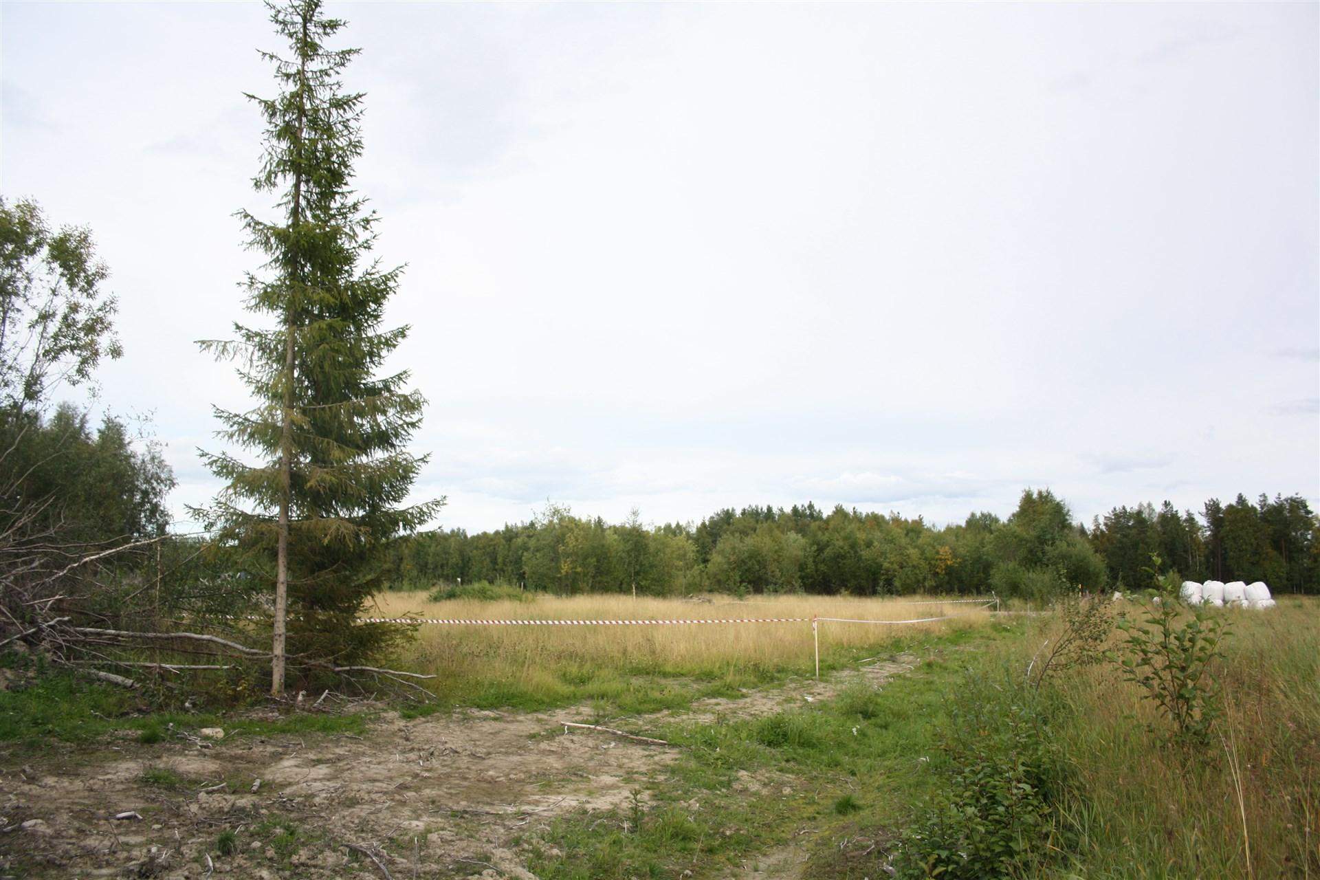 Till vänster Bensbyn 1:69 2782 m²