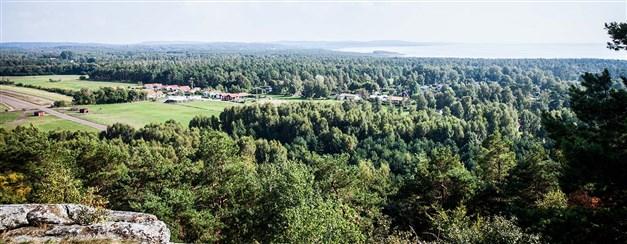 Falkenbergs högsta punkt? Utsikt från Smörkullen. Foto: Destination Falkenberg