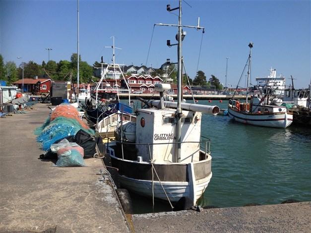 Fiskehamnen i Grisslehamn