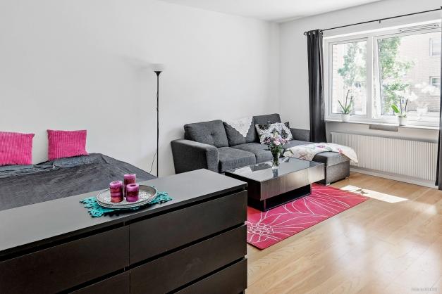 Rymligt vardagsrum / sovrum