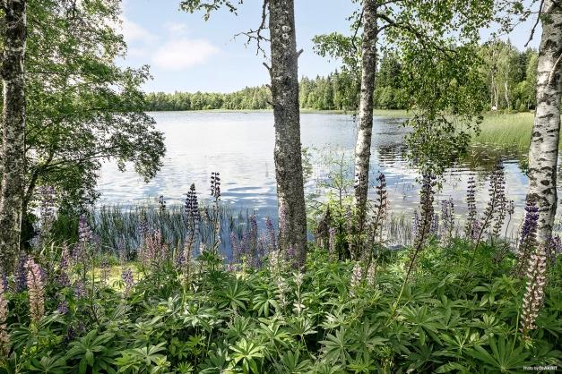 Oemotståndlig vy över Gamlarpasjön från den egna sjötomten