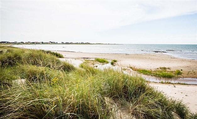 Glommens norra strand. Foto: Destination Falkenberg