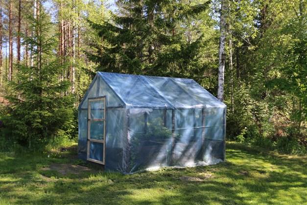 Växthus i trädgården
