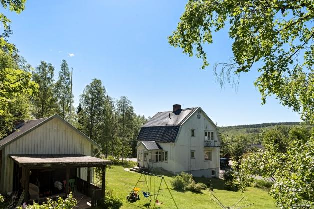 Uppvuxen trädgård med skogen som närmaste granne