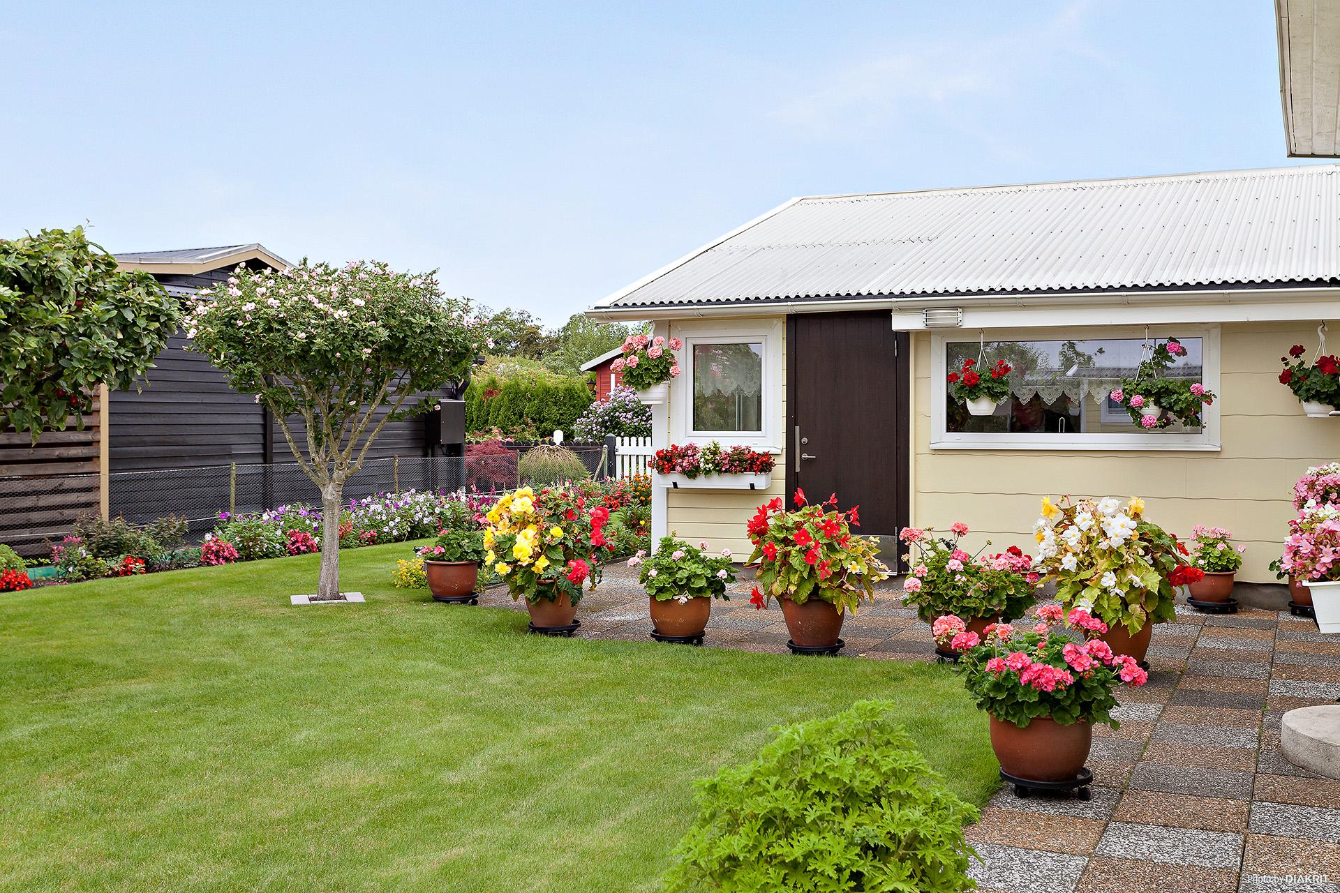 Fantastiskt välhållen trädgård