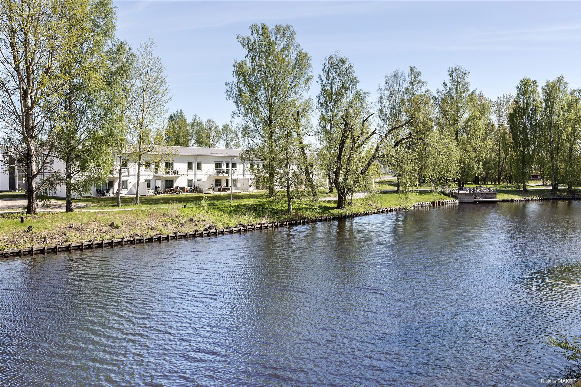 Sommarbild: Områdesbild vid Svartån
