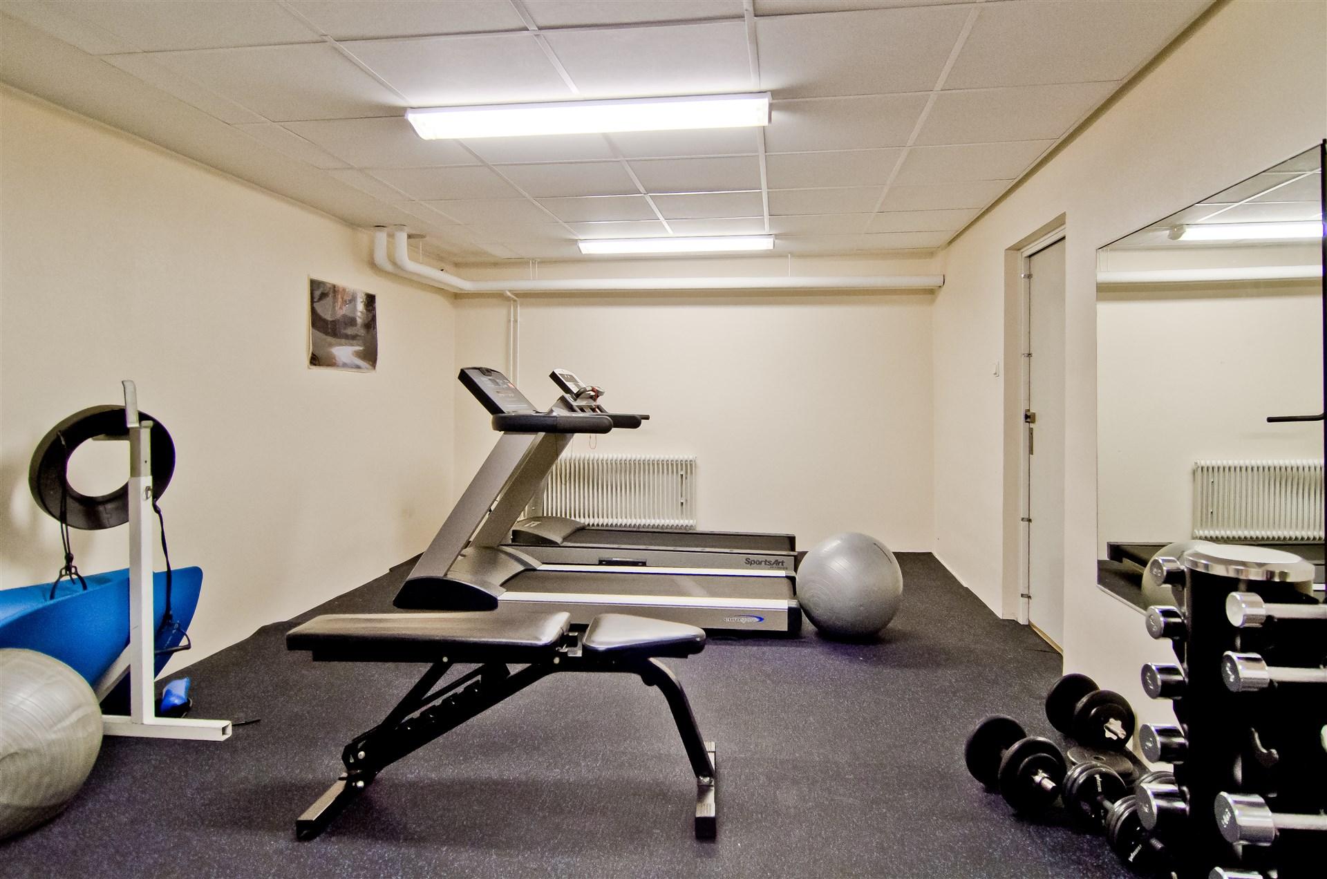Föreningens gym