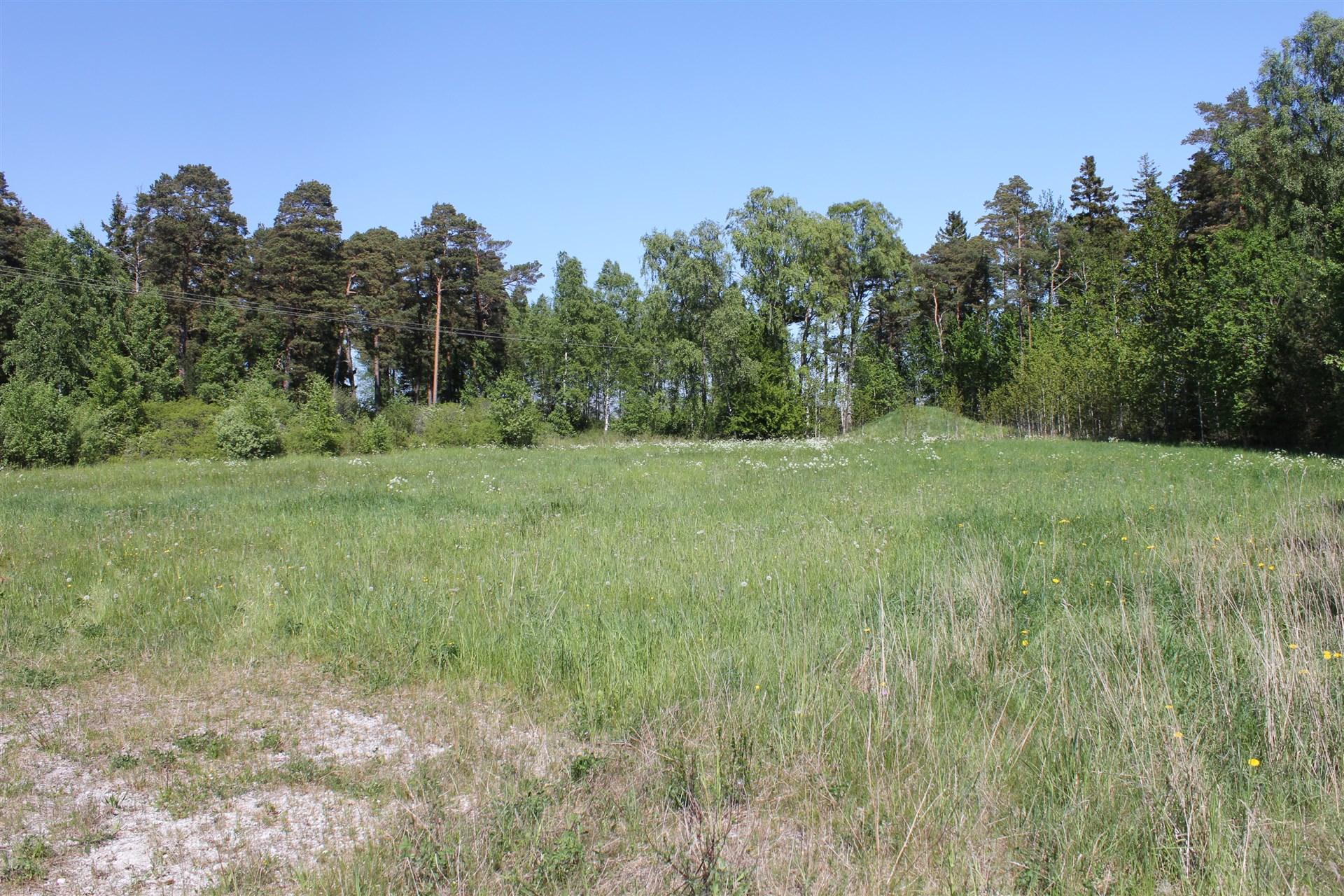 Gemensamt grönområde