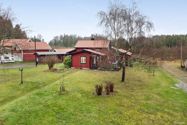 Välkommen till Rackeby Skogsbo!