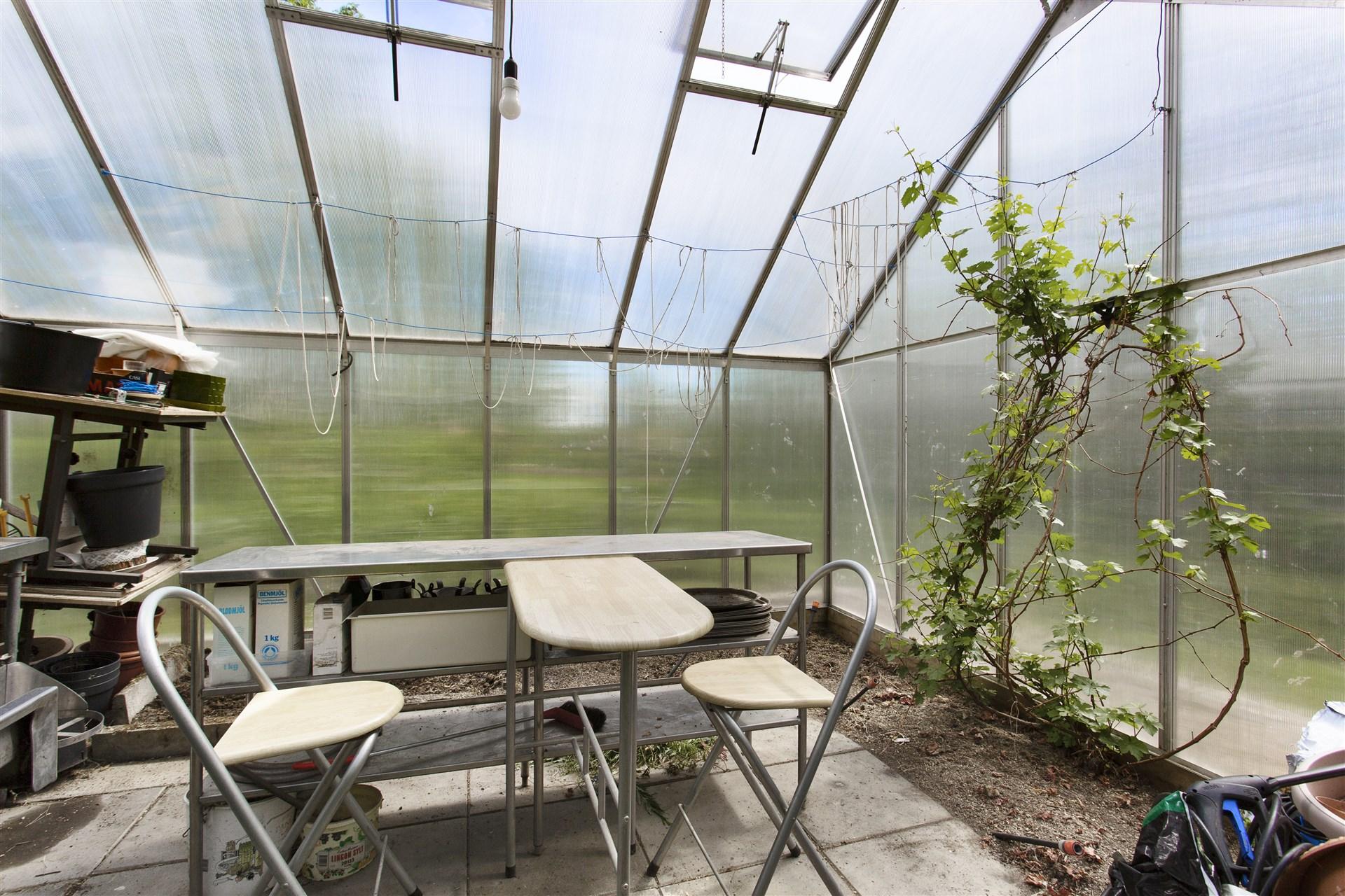 Interiör växthus