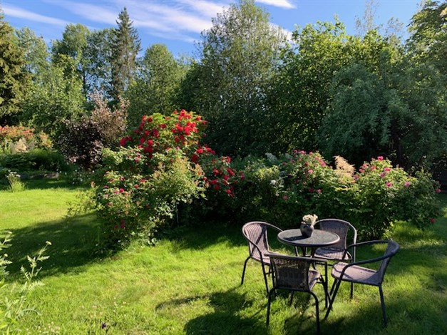 Privat bild på trädgården, en härlig plats för en kopp kaffe!