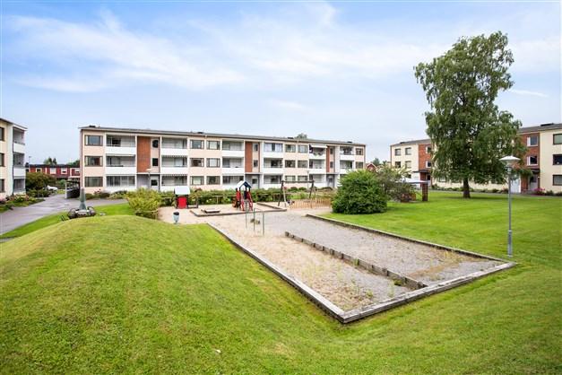 Välskött innergård med gräsytor, lekplats och gemensam uteplats.