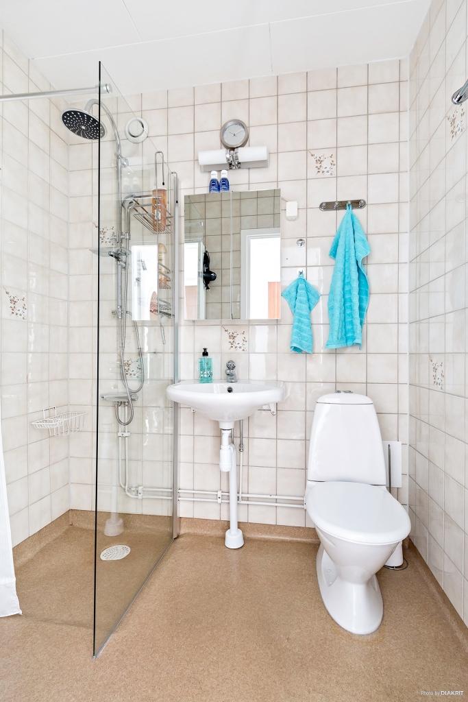 Badrum med wc, handfat och dusch.