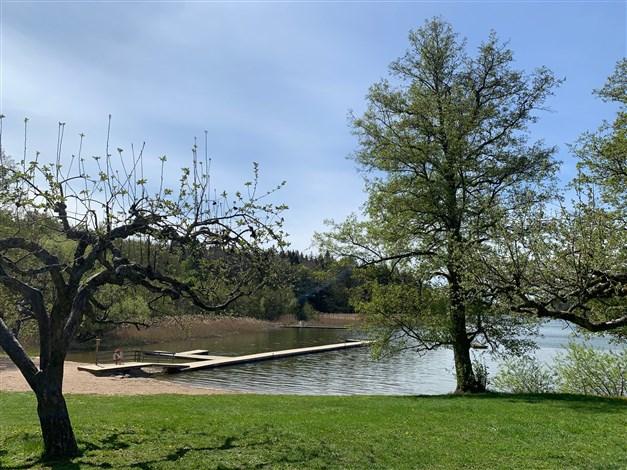 Skavlöten badplats vid Rönningesjön