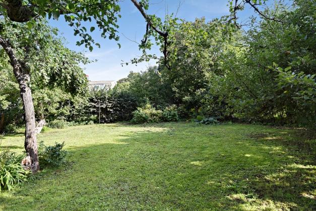 Plan och fin trädgård