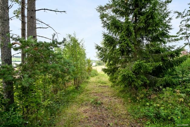 Det är en bit av en byväg som förr sträckte sig mellan gårdarna i byn. Den finns dokumenterad på byns tidigaste lantmäterikartor från 1700-tal.