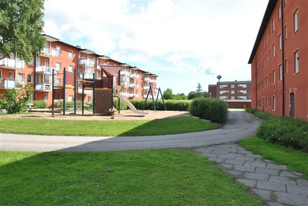 Innergården (sommarbild) Trappuppgång i huset till höger i bild.