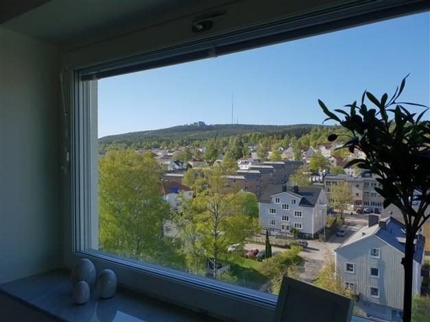 Utsikt mot Södra Stadsberget från det mindre köksfönstret
