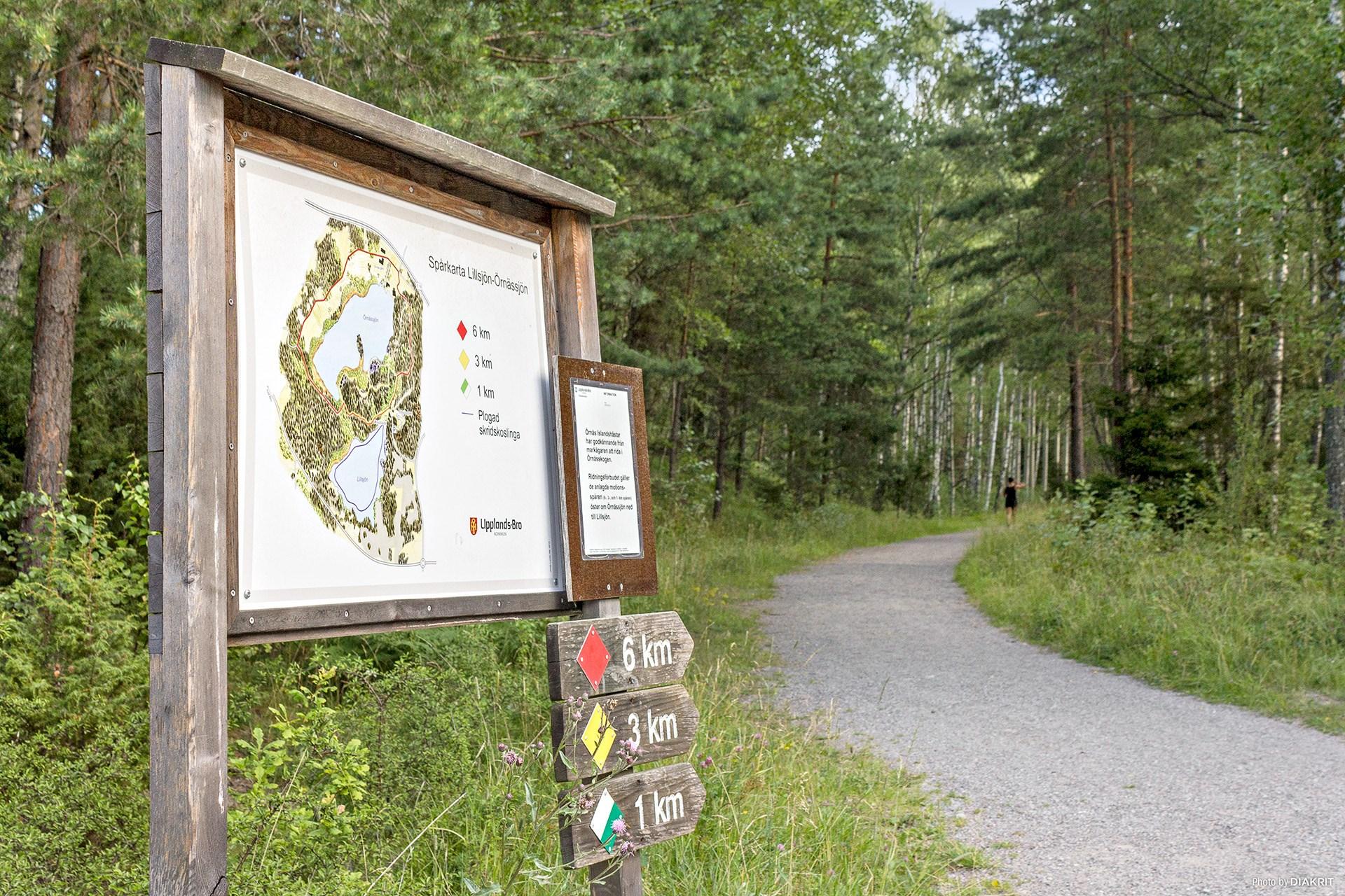 Löprunda i skogen, hur långt vill du springa?