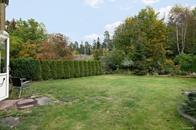 Trädgård & planteringar
