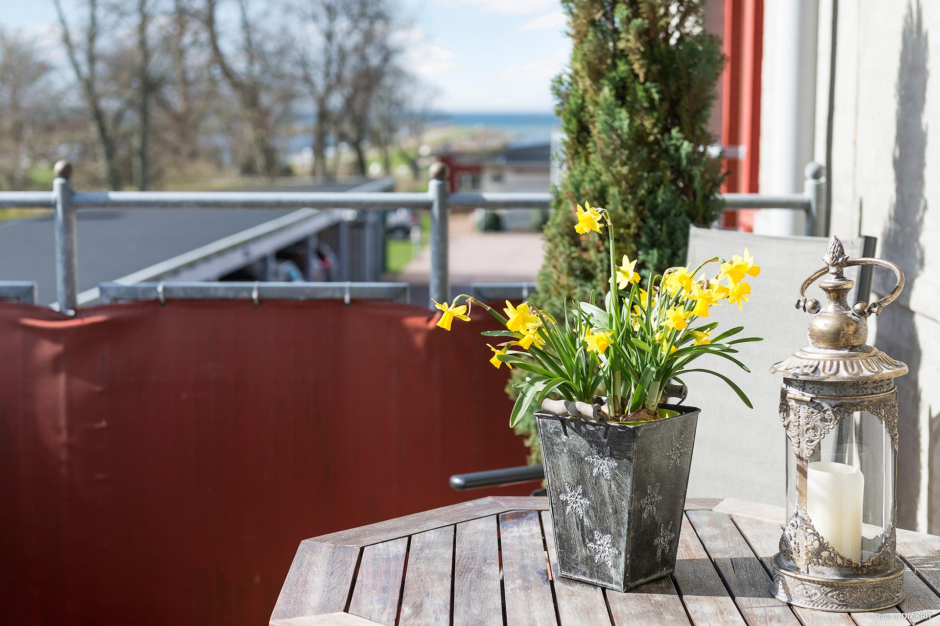 Våren närmar sig med njutbara stunder på balkongen