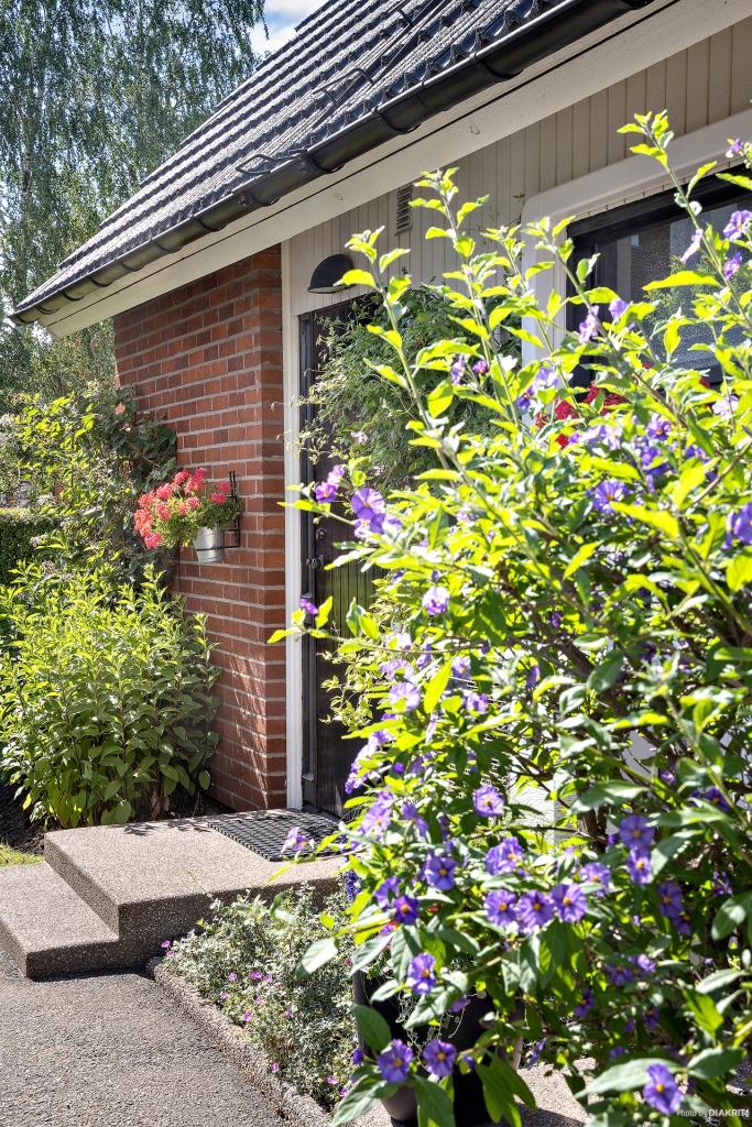 Två entréer vackert omslutna av perenna växter