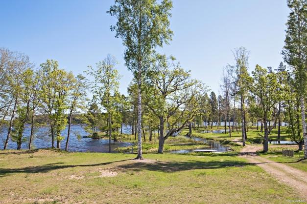 Promenadpark intill Dalälven