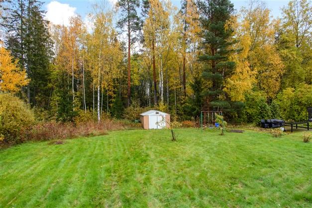 Lättskött trädgårdstomt med skogen intill.