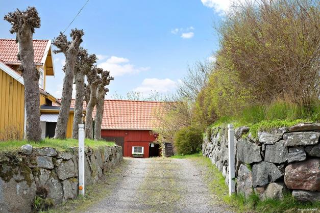Infarten med vackra murar förstärker den trevliga gårdskänslan.