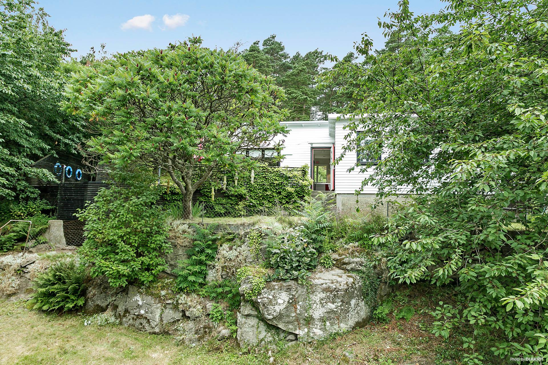 """Huset ligger delvis upp på """"berget"""" insynsskyddat från all håll."""