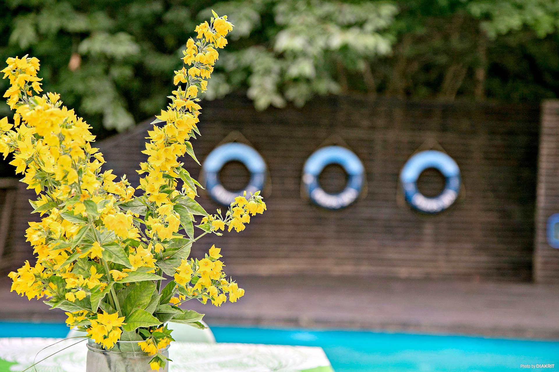 Här har du unikt läge att förvärva en stor insynsskyddad tomt och ett mycket charmigt fritidshus med egen pool.