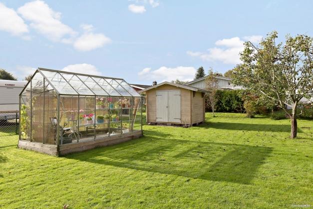 Trädgård med redskapsbod och växthus!