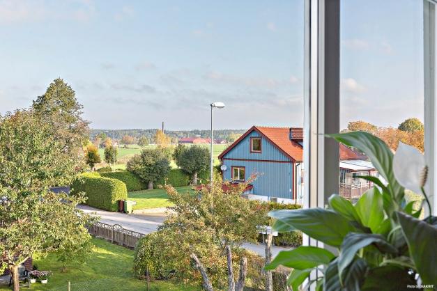 Underbar utsikt från sovrumsfönstret!