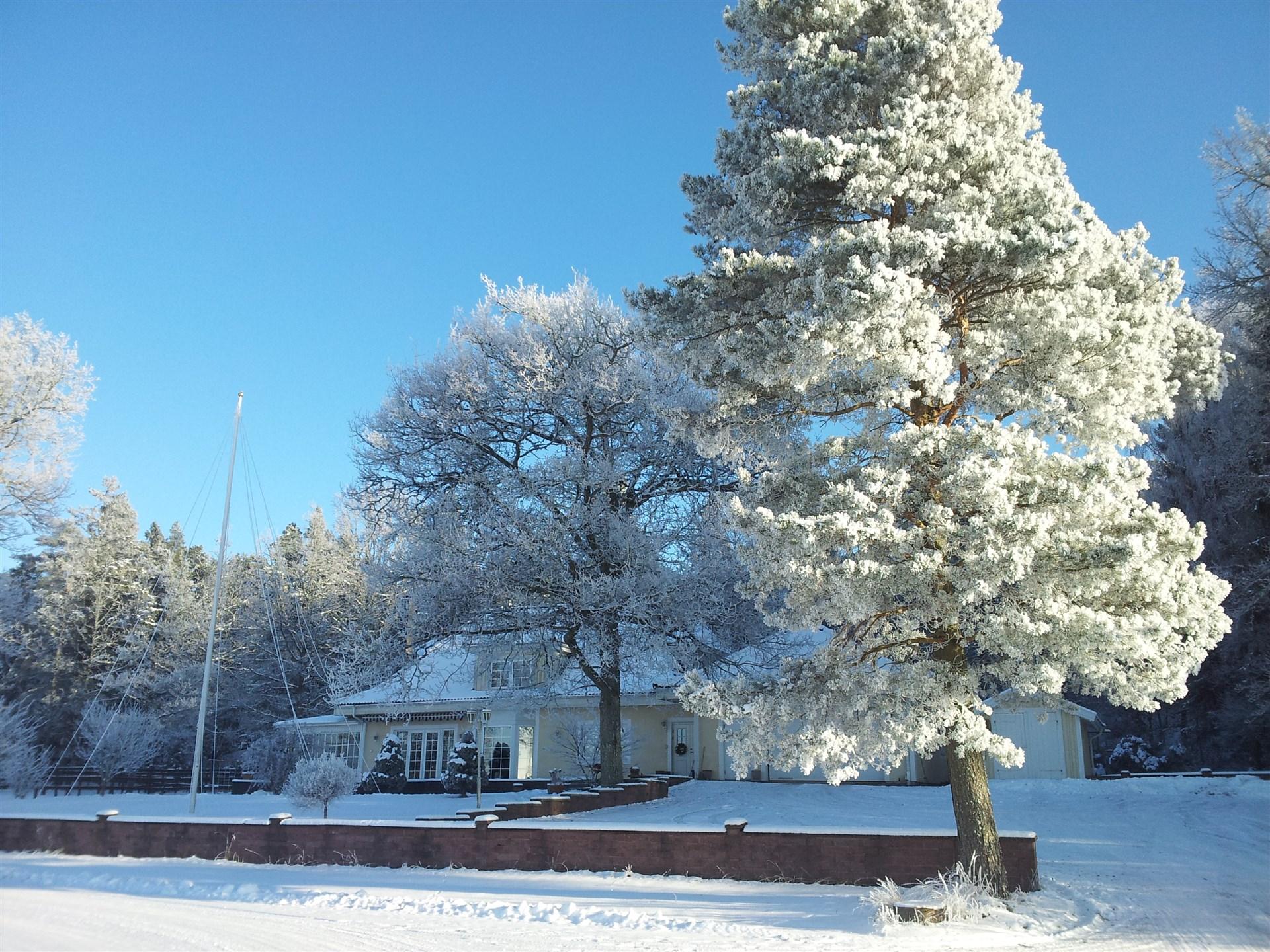 Bäckgården i vinterskrud (säljares bild)