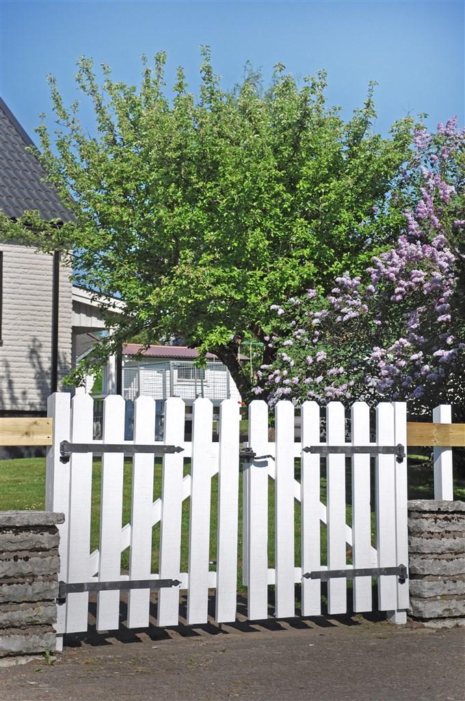 Vacker grind som välkomnar dig in i den grönskande trädgården