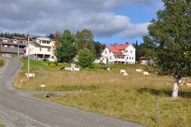 Närmaste granne med Ottsjöbua i norr